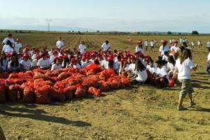 Ensino: Caloiros da Católica-Lisbon participam em praxe solidária de «Combate ao Desperdício Alimentar»
