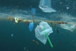 Porto: «Salvar os Oceanos» com o Grupo Ecuménico Jovem