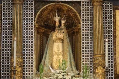 Imaculada Conceição: Arquidiocese de Évora honra padroeira com quatro dias de festa