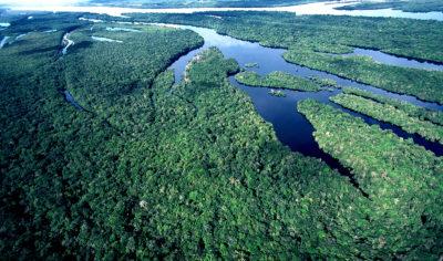 Igreja/Ecologia: Tertúlia «Pára, escuta e transforma: Interpelações da Amazónia»