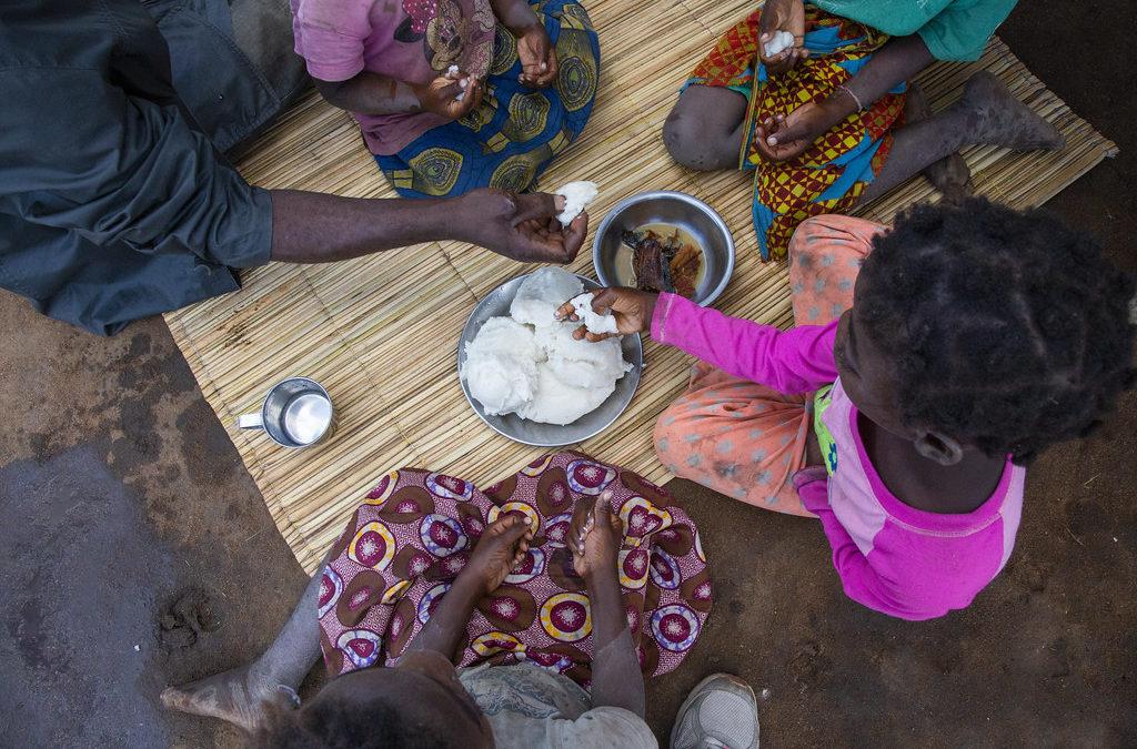 Moçambique: Seis meses depois do Idai, reconstrução avança lentamente (c/fotos)