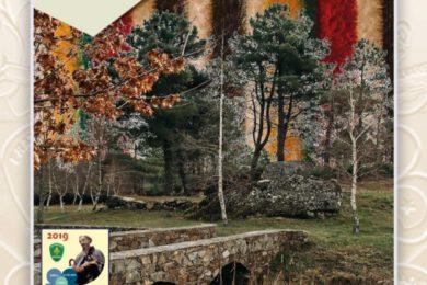 Ambiente: Fraternidade de Nuno Álvares promove ação de reflorestação na Serra da Estrela
